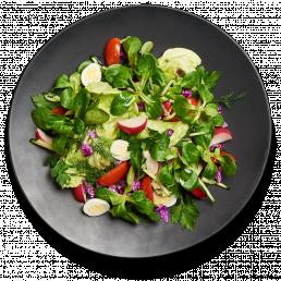 Зелёный салат с редисом